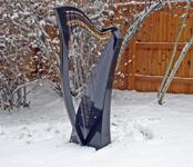 Alice's carbon fiber harp in the snow